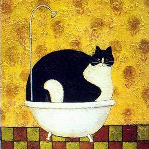 Élményfestés- Fürdő cica